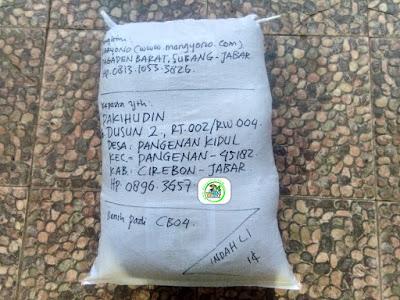 Benih Padi Pesanan   PAKIHUDIN Cirebon, Jabar.   (Setelah di Packing).