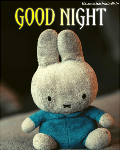 teddy good night photo download