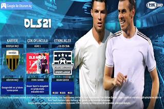 DLS 21 V6.13 2020 HD