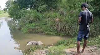কুলিক নদীতে এক অজ্ঞাত ব্যক্তির মৃতদেহ উদ্ধার