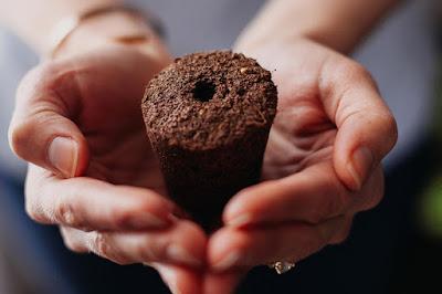 tierra en forma de cono que contiene las semillas y nutrientes