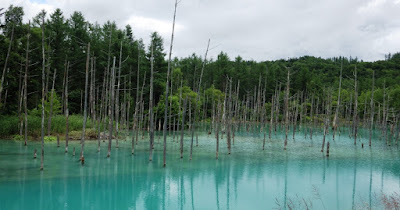 青い池 その2