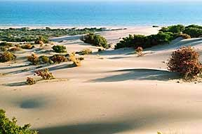Patara-Turcia-plaja-statiune