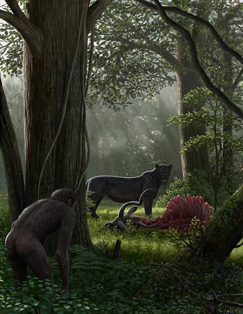 Η υποβάθμιση της βιοποικιλότητας που προκαλείται από τον άνθρωπο ξεκίνησε πριν από εκατομμύρια χρόνια