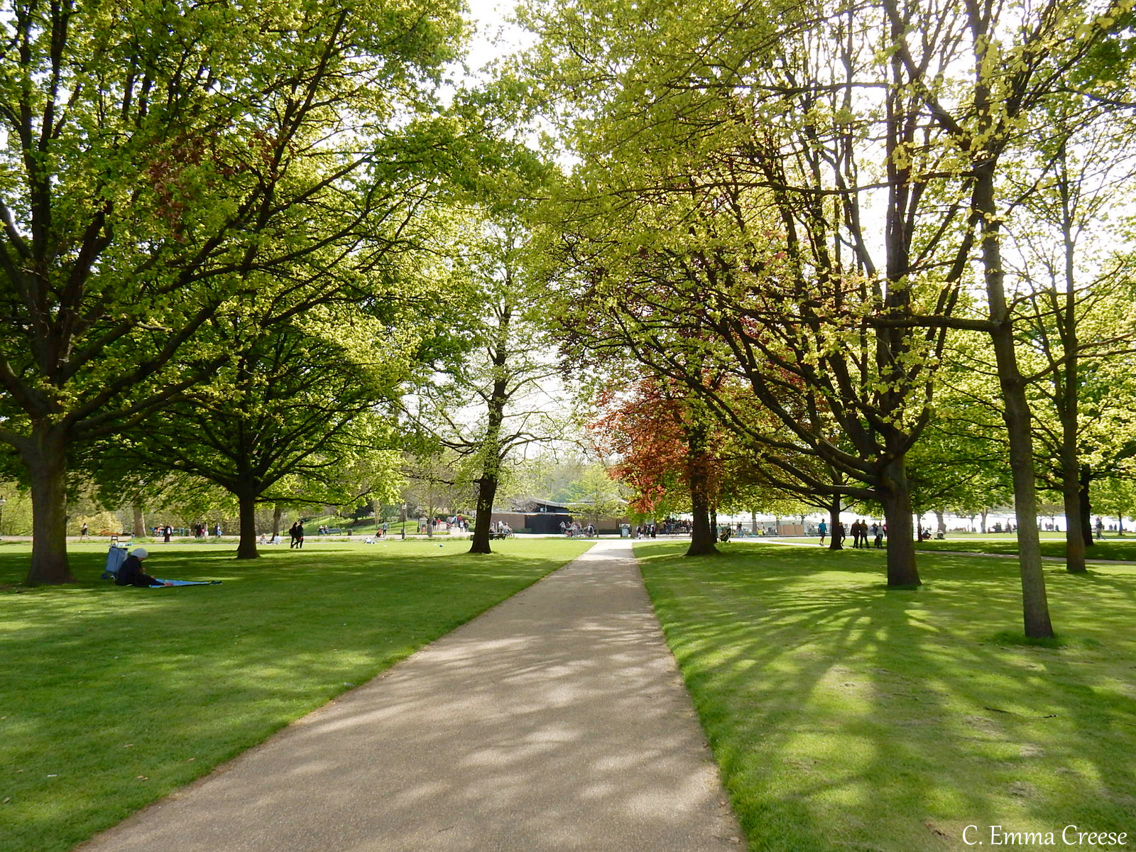 Hyde Park The 10 best picnic spots in London Adventures of a London Kiwi