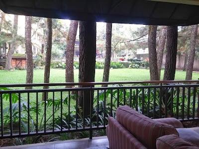 view halaman hotel sandalwood