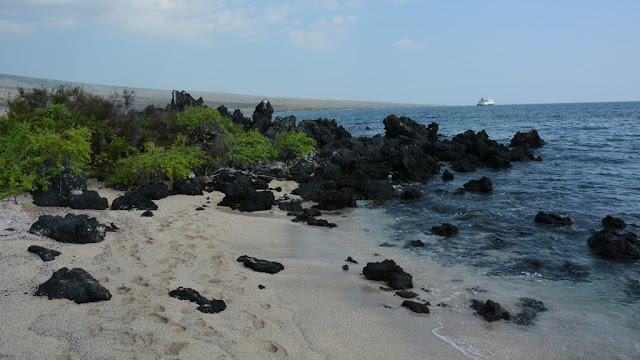 Urbina Bay Galapagos