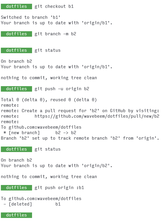 terminal commands to rename branches