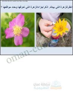 شرح أجزاء الزهرة - علوم للصف الخامس الفصل الأول