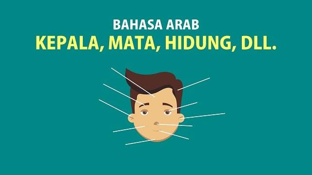 Bahasa Arab Kepala - Mata, Hidung, Mulut, Telinga Dll