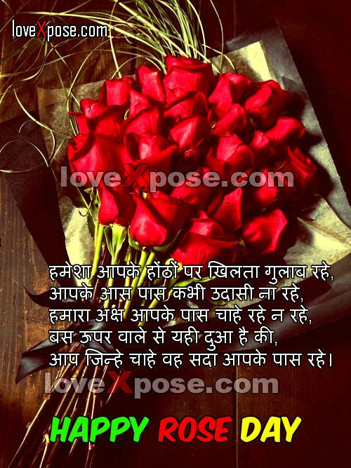 Happy Rose Day 2016 SMS Messages wishes text shayari Quotes in English Hindi with Gif animated images picture HD wallpaper and Greetings