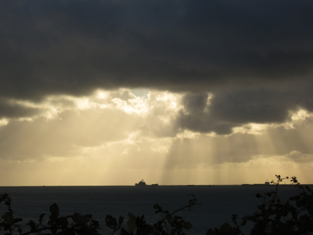 Ship on dark horizon silhouetted against white clouds in grey sky. Sun rays and blackberry leaves.