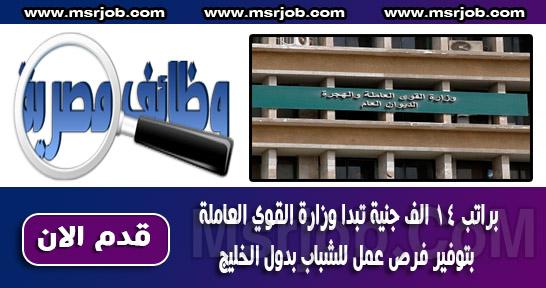 براتب 14 الف جنية تبدا وزارة القوي العاملة بتوفير فرص عمل للشباب بدول الخليج