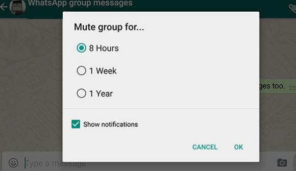 Inilah Cara 10 Trik Membuat Diri Anda Seolah-Olah Menjadi Guru WhatsApp 3
