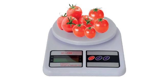 Penimbangan Tomat