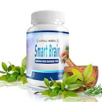 Obat Herbal Otak Pintar