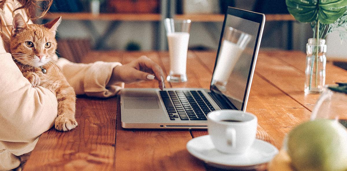Mejores Sitios para Ganar dinero por Internet