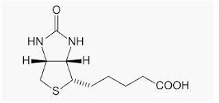 Structure of vitamin B7