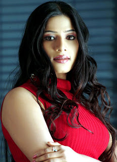 Meenal Red Hot 5.jpg
