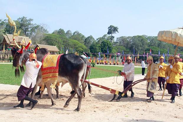 Fête du Sillon sacré à Siem Reap