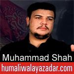 https://humaliwalaazadar.blogspot.com/2019/08/muhammad-shah-nohay-2020.html