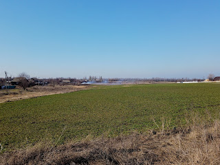 Посёлок Удачное. Сельскохозяйственное поле с восточной стороны посёлка