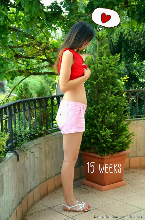 embarazo desdeesteladodemimundo.blogspot.it
