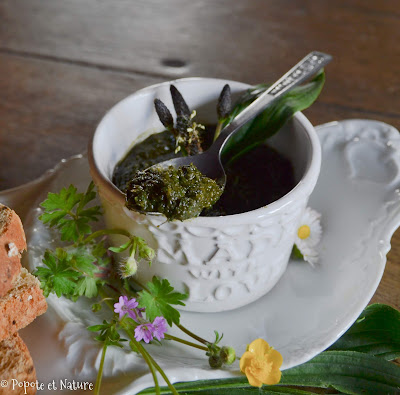 Pesto de plantain lancéolé ©Popote et Nature