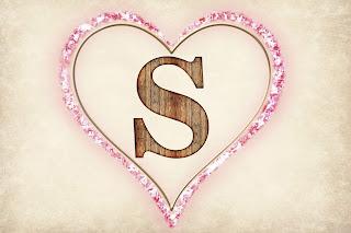 S style logo,s style image