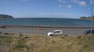 Câmera ao vivo da Nova Zelândia