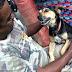 Polícia Militar Ambiental facilitou a adoção de 250 cães e gatos