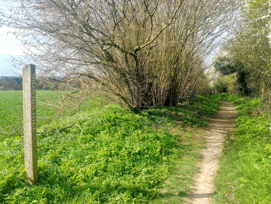 Graveley bridleway 5 over Brooks Hill