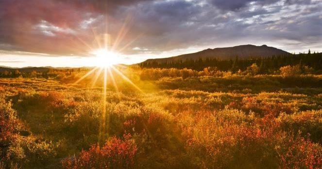 Fakta-fakta Menarik yang Berkaitan dengan Pagi Hari