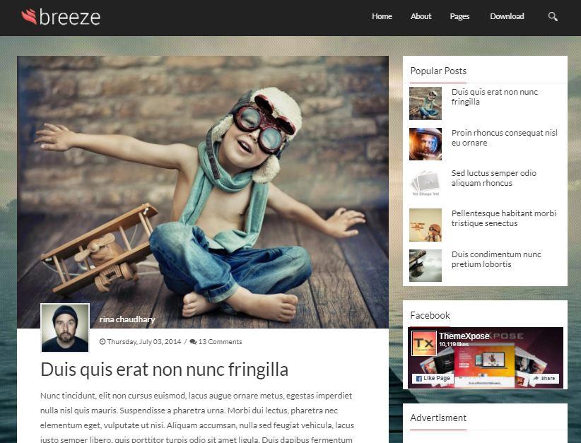 Breeze-premium-version-responsive-blogger-template-free-download