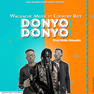 AUDIO | WACHACHE MUSIC Ft COUNTRY BOY - DONYO DONYO | DOWNLOAD