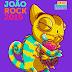 João Rock 2019: confira todas as atrações confirmadas para o festival