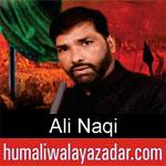 https://humaliwalaazadar.blogspot.com/2019/08/ali-naqi-nohay-2020.html