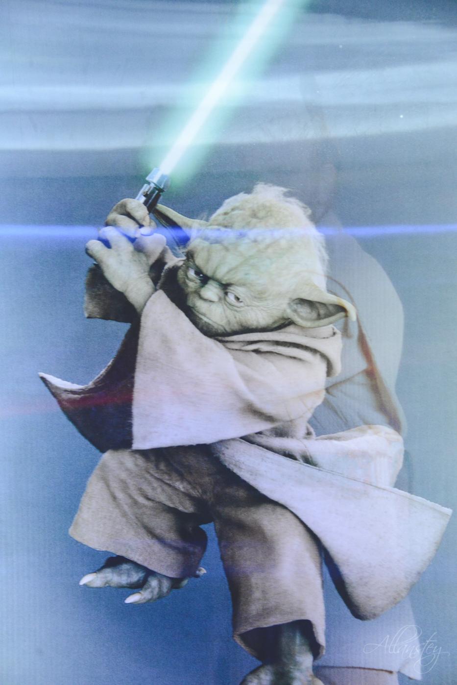 Yoda Star Wars in Detsky Mir shop