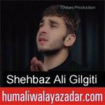 https://humaliwalaazadar.blogspot.com/2019/08/shehbaz-ali-gilgiti-nohay-2020.html