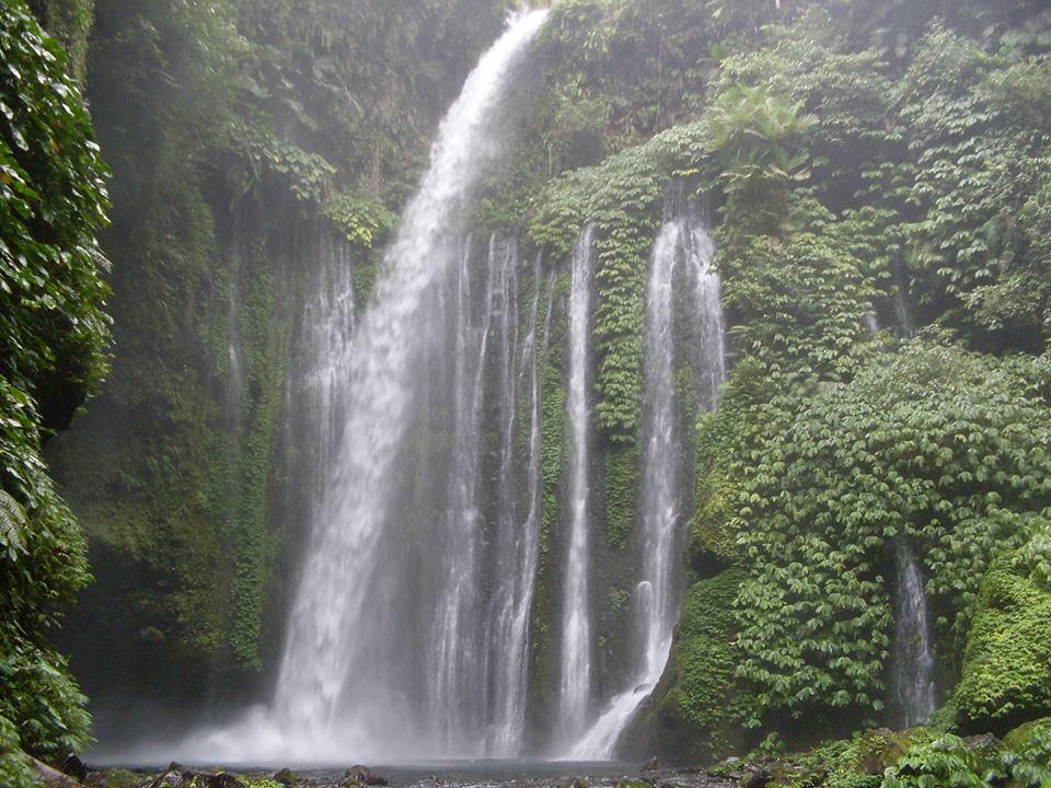 Image result for lae singgabit