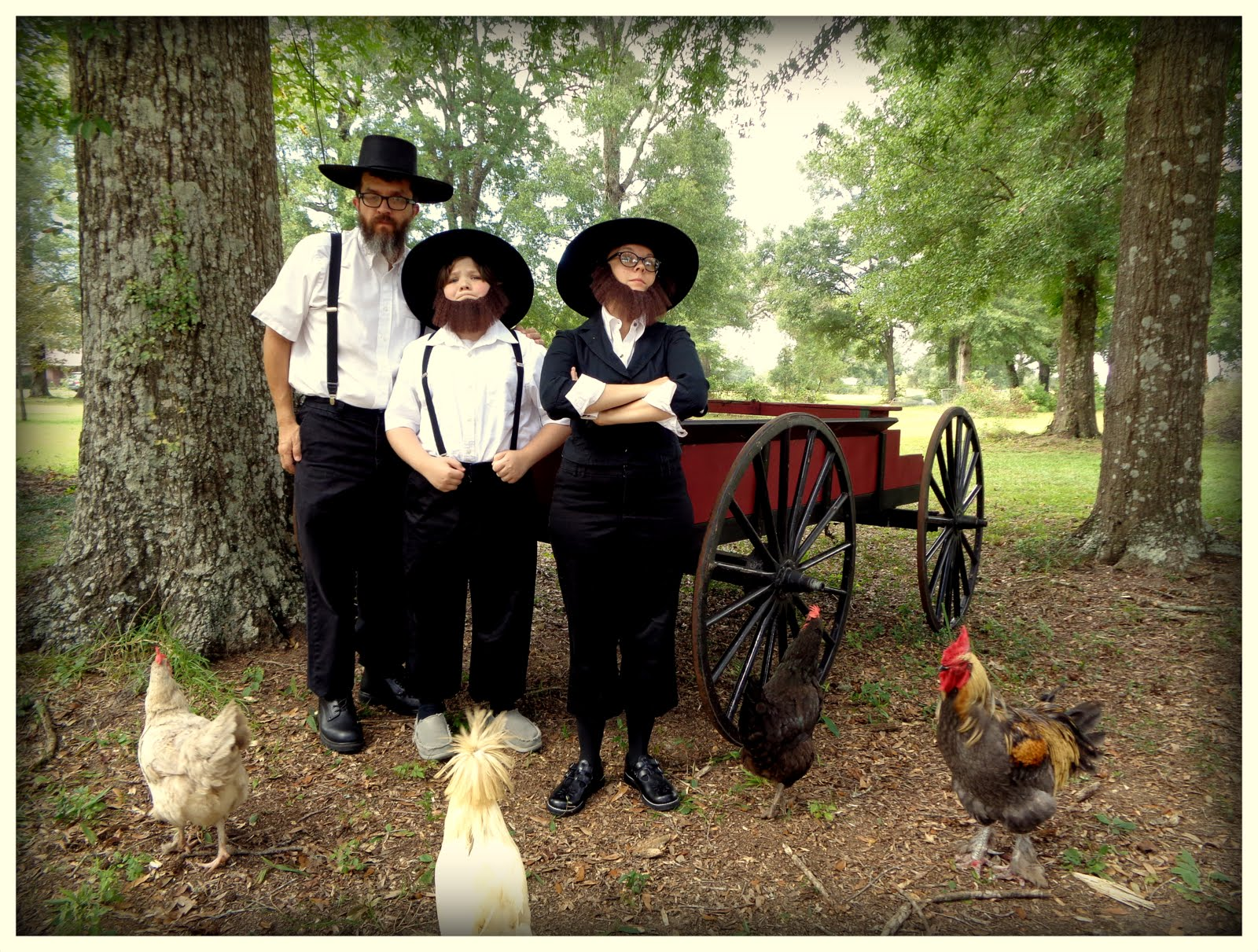 the amish life The amish cook: 5 things gloria enjoys about the amish way of life thanks to mrs moore from ohio, who inquired, what five things do you enjoy the most about the amish way of life.