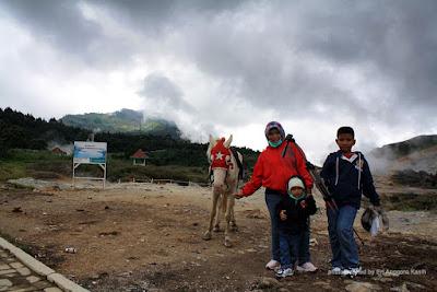 Kuda sewaan di Kawah Sikidang.