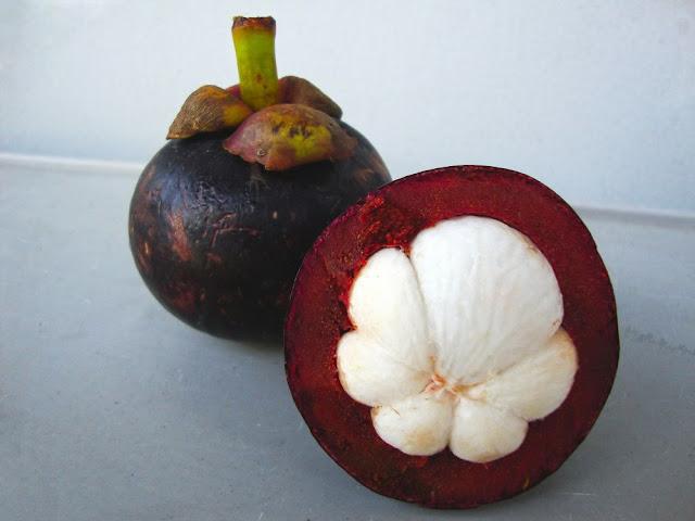 Quả Măng Cụt - Garcinia mangostana - Nguyên liệu làm thuốc Chữa Bệnh Đi lỏng-Đau Bụng