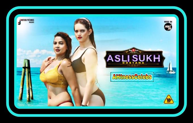 Asli Sukh: Dostana (2021) - BigMovieZoo Hindi Complete Hot Web Series
