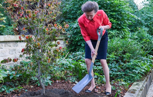 the Princess Royal planted the first overseas Jubilee Tree, as part of the QueensGreenCanopy