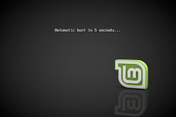 Cara Instalasi Linux Mint 19