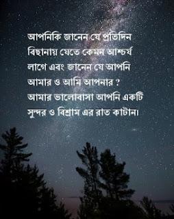 বাংলা শুভ রাত্রি হোয়াটস্যাপ স্ট্যাটাস