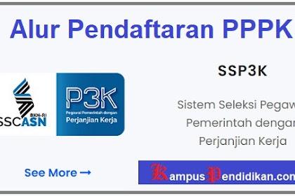 Alur Pendaftaran PPPK 2021