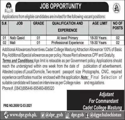 Latest Jobs in Pakistan Cadet College Mastung Jobs 2021