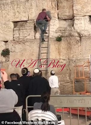 Snake Wriggles Out Of Israel's Western Wall Sparking Claims Biblical Prophecy Is Coming True
